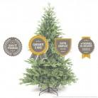 Sapin de Noël HIPPOLYTE : qualité & garantie