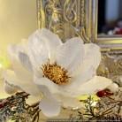 Fleur anémone - Ivoire