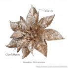 Fleur de Noël - Champagne : détails