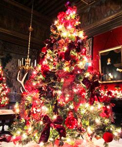 Noël Royal